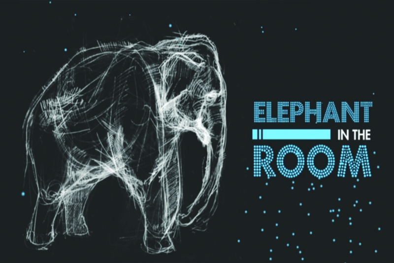 Elephant in the Room(front)
